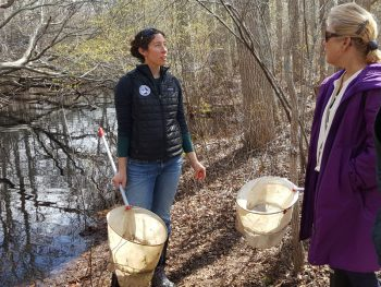 Staff led Vernal Pool Walk